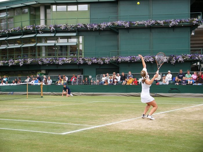 tennis-professional-woman_default imageabay