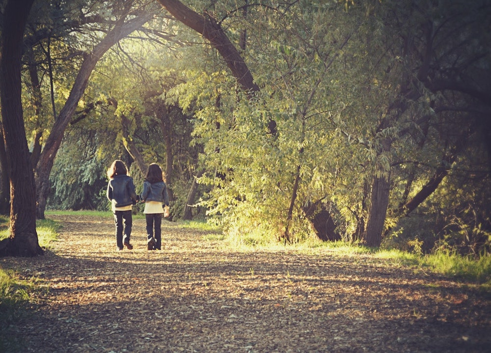 Nature Trail on Wimbledon Common
