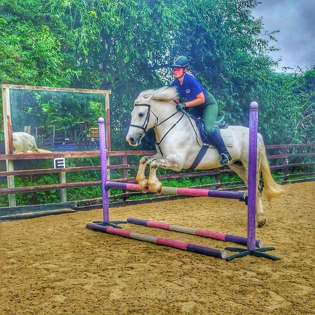 Deen City Farm & Riding School